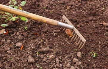 Gardening By Month: May