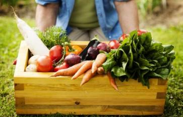 Disappointed In Your CSA Box? Read This