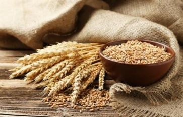 Superfood 101: Wheat!