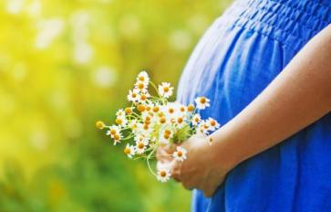 The Ayurveda Guide To Pregnancy