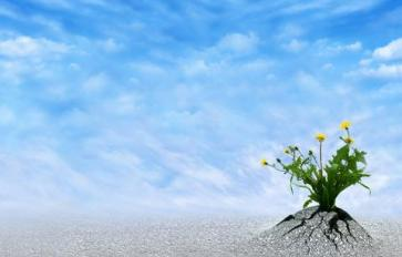 Align Your Schedule With Nature To Heal Your Body