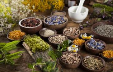 Ayurveda 101: Seasonal Rhythm Of The Doshas