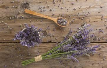 Essential Oil Essentials: Hole-y Moly! 5 Natural Moth Repellents
