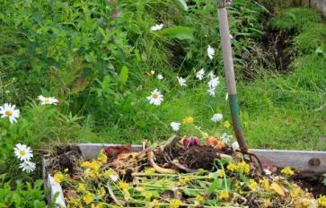 5 End-Of-Season Steps For A Sustainable Garden